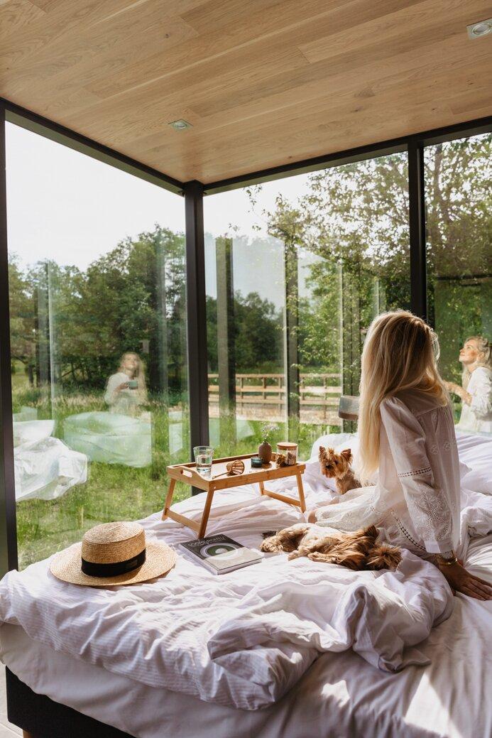 ÖÖD House, mirror house, lustrzany dom, estonia, pieski, śniadanie